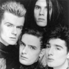 thecult
